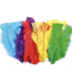 Φτερά για χειροτεχνίες Μεγάλα
