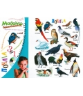 Πουλιά Μαθαίνω διασκεδάζοντας + Δώρο cd, αφίσα