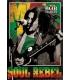 Bob Marley 3D posters