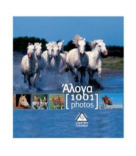 Άλογα 1001 photos